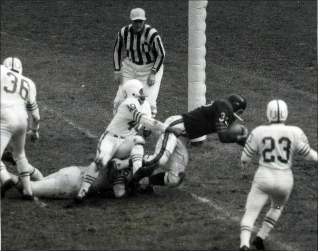 Wire Service: Chicago Bears vs. Baltimore Colts, 1956